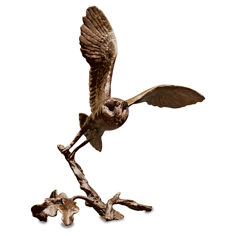 taking off bronze barn owl UK TOBBO a main