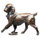 carefree bronze springer UK CFBS a main
