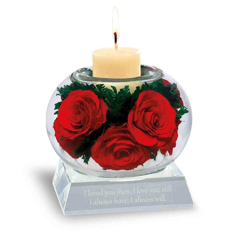 love always miracle roses UK LAMR a main