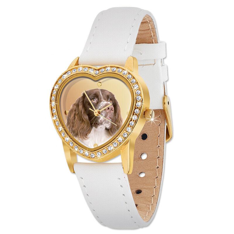 the springer spaniel heart watch UK SSHW a main