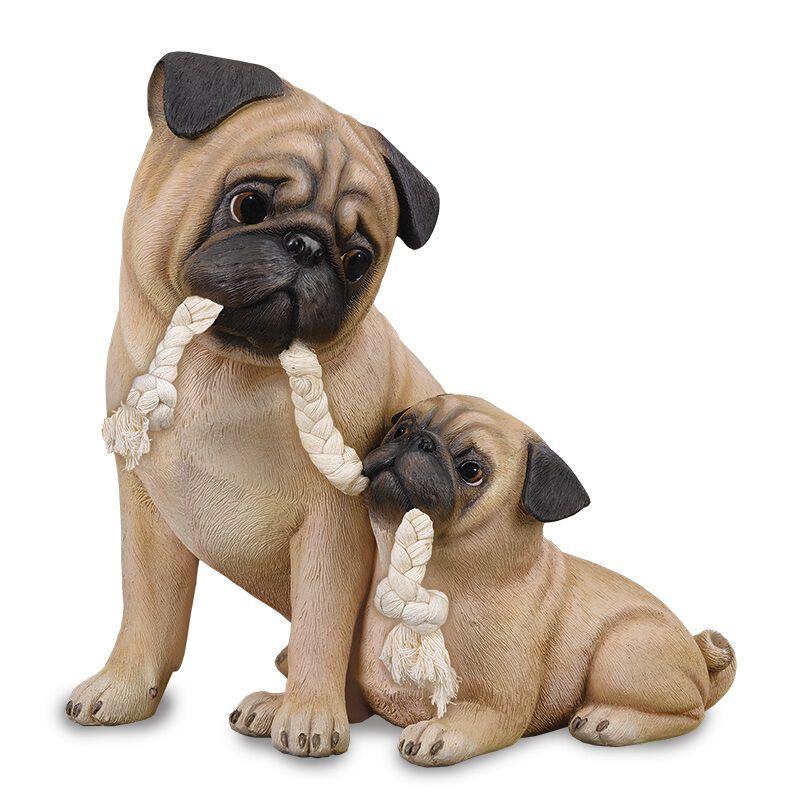 puppy love pug UK PGMP2 a main