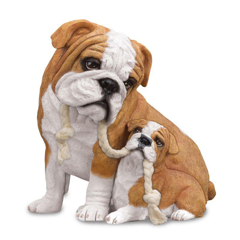 puppy love bulldog UK PLBDG a main