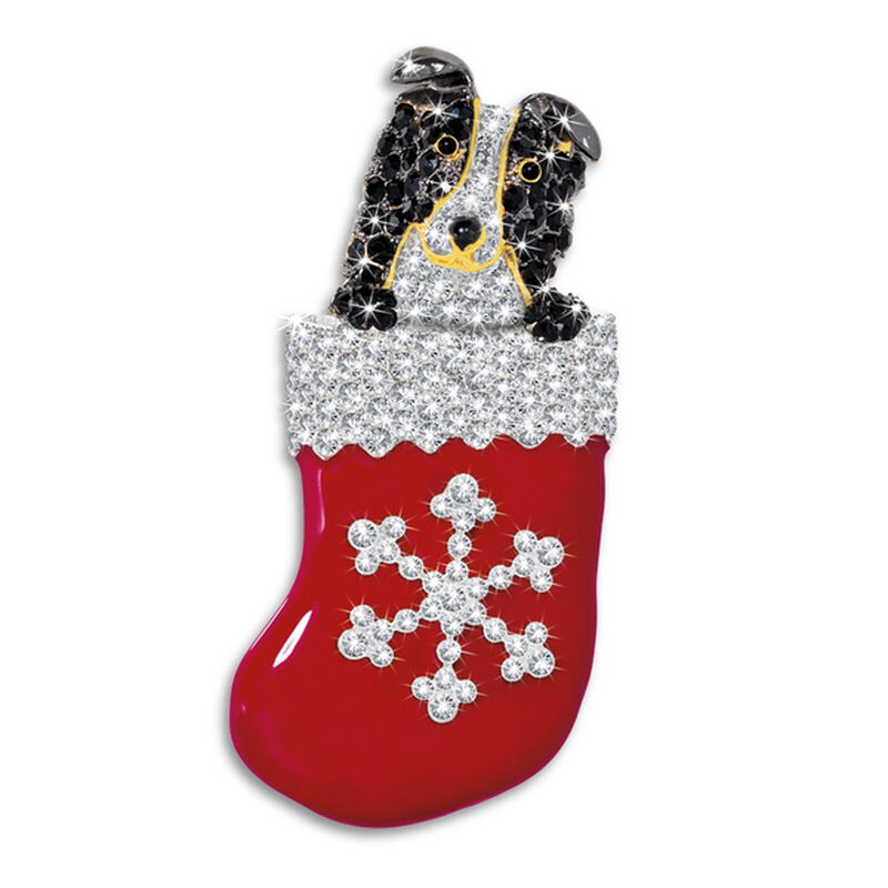 border collie pup in stocking brooch UK CPSTB a main